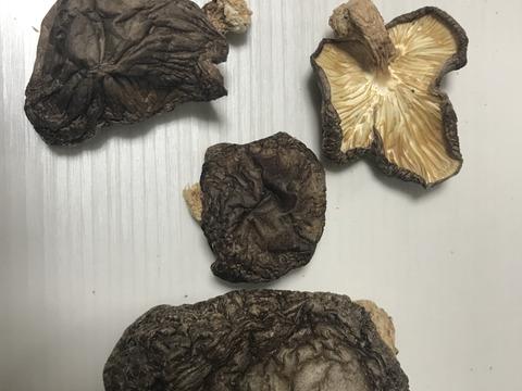 天然原木栽培 色々丸干し椎茸150g 2袋 割れや変形にてお得な料金で‼️味は変わりありません。出汁取りに最適。 秩父からお届けします。