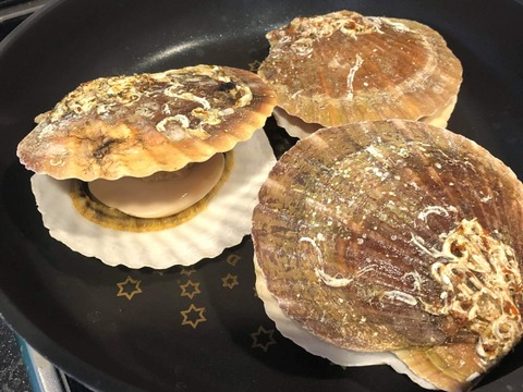 【北海道からお届け!】噴火湾産ホタテ貝(2kg 16枚前後)