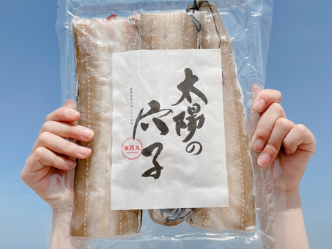 【太陽のあなご】日本海で育った絶品あなご!130g〜150g3袋セット