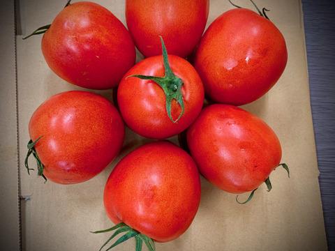 <イタリアントマト>【2kg】*【おうちごはん】【パスタ】【トマトソース】【ボロネーゼ】