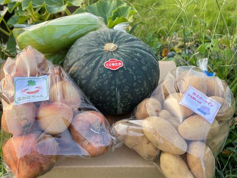 天草産 基本野菜セット 〔ジャガイモ、玉ねぎ、人参、カボチャ✙時期によって少し変更野菜〕 5~8品目、80サイズ箱いっぱい≪やや訳あり≫