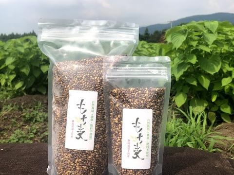 自然栽培 もち麦(玄麦・ダイシモチ) 10kg 農薬肥料不使用のスーパーフード!
