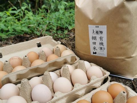 【詰合せ】【新米】有機棚田米5kgと平飼い卵30個(S-L混合) レモンイエローの黄身!