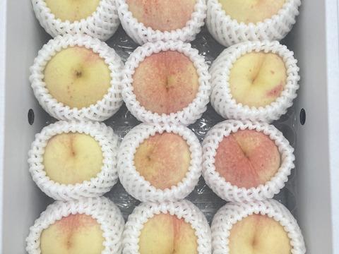 岡山県産 『桃水』 今年最後の品種です‼️※12玉 加工用