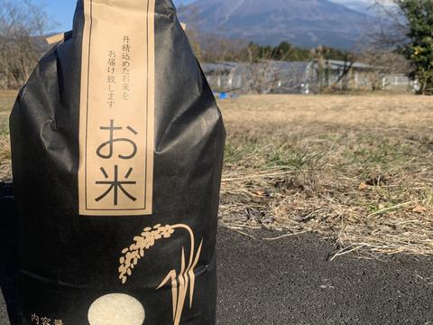 もっちもち!富士山の雪解け水で作った、お〜いしいお米『富士山白糸こしひかり』10㎏