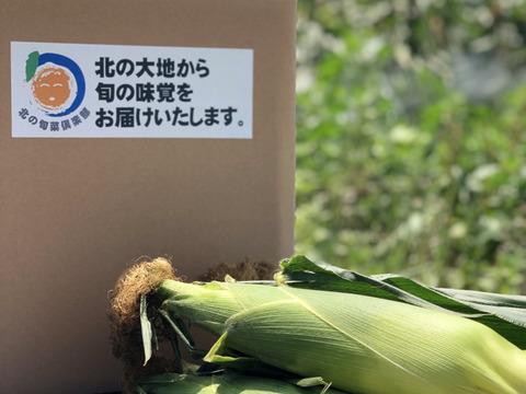 【予約必須】北海道産 たった2回のみの収穫!!糖度17度のトウモロコシ!22本入り!贈答品にもおすすめ!