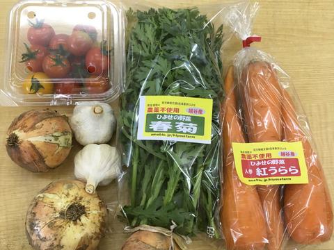 【人気No2】『単身者向け』みんなのお野菜 お試しパック おまかせ 5品