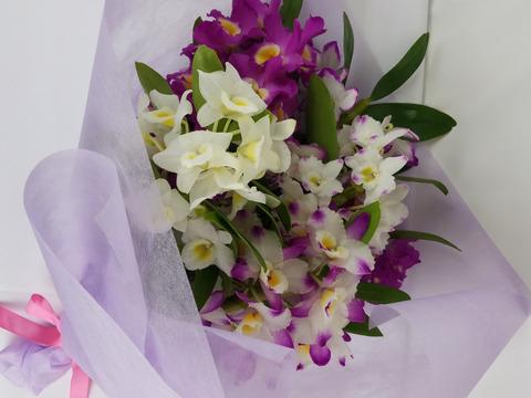 【メッセージカード付】~ちょっぴりラッピング付~蘭の花束をどうぞ(期間限定)