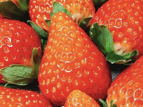 美味しさも見た目もまさに別格!苺好きを魅了する『紅い雫』。