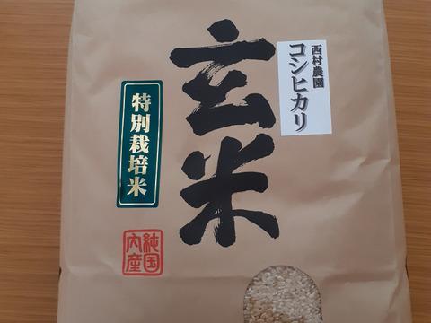 『絶品』西村さんちの美味しいお米 コシヒカリ 玄米10キロ
