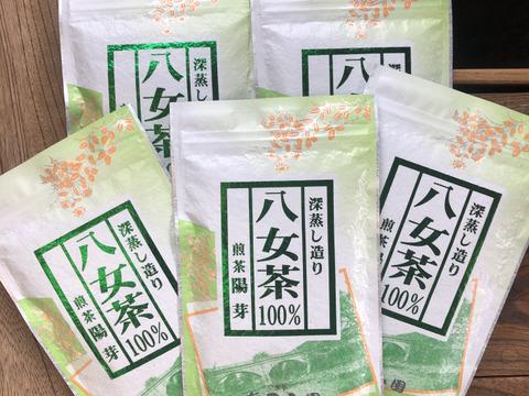 八女茶100%煎茶100g5本セット