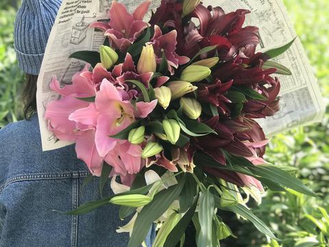 【母の日ギフト】thanks bouquet ピンク 早期ご予約特典は2つ!【20名限定】ご注文頂いた方の中から抽選で1名様に 「YOUR LILIY」ユリさんの作品集をプレゼント!!