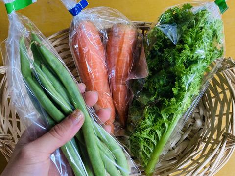 【期間限定☆旬の野菜セット】11月12日までです!にんじん わさび菜 筋なしいんげん