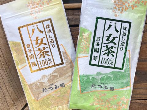 八女茶100% !!高級八女茶好きな方はぜひ‼︎当店人気の深蒸し茶2本セット♡