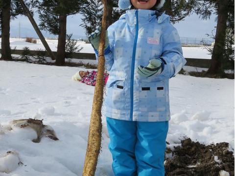 【期間限定】とろ~り雪中自然薯とアイガモ育ちの有機JAS認証つや姫セット(200g、白米5kg)
