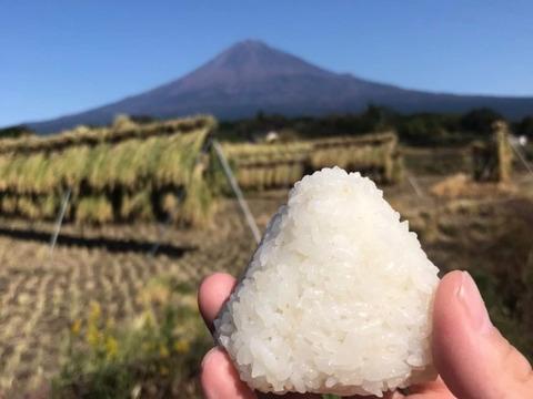 富士山麓。自然栽培のお米10kg