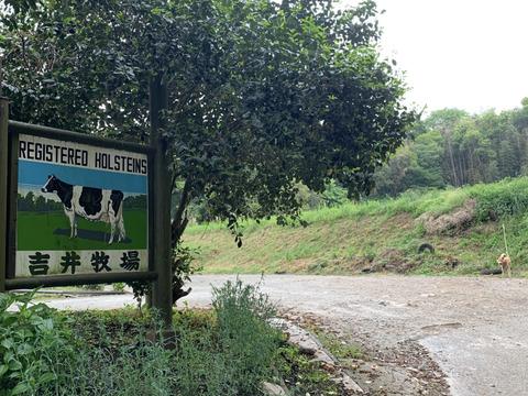 吉井牧場のアラカルトセット2000円コース