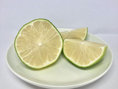 えひめレモン(2.5kg)