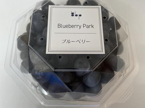 ♢✦国産早生✦♢ ブルーベリー Mix(小粒〜中粒)1kg  *農薬不使用
