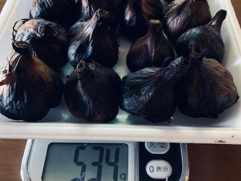 自然栽培 黒にんにく 500gセット 福地六片種