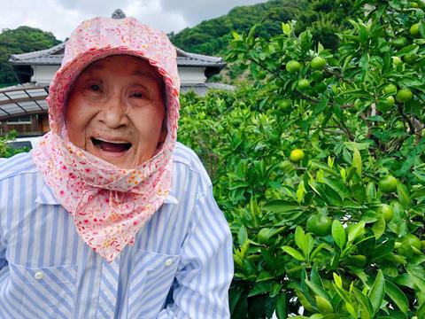 【2S~S3kg】第四弾!94歳とみ子ばぁばの有田みかん