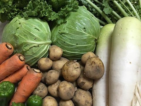 【お得なセット割引&送料が1個分】抗酸化野菜セット+無農薬砂糖(野菜セットの段ボールに無農薬砂糖を同梱します)