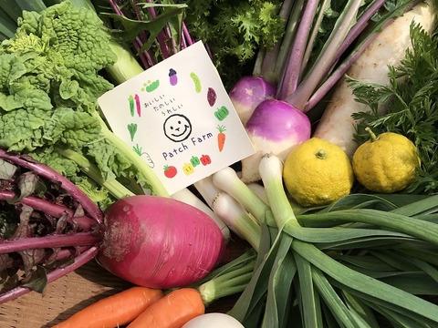 【パッチファーム】旬*お試し野菜セット(7品目)