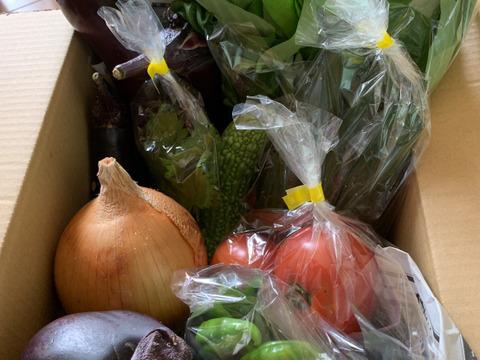 夏盛❗京野菜セット❗【80サイズ】【6~8品目】