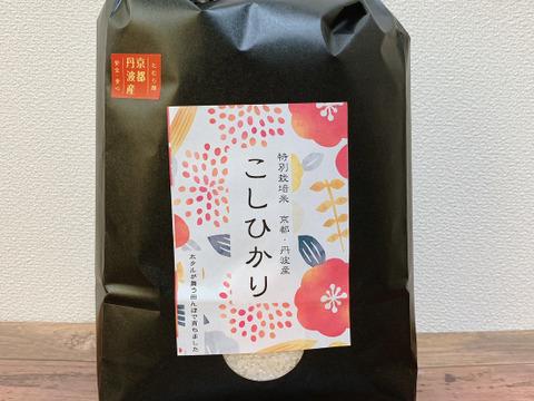 令和3年産【新米】京都丹波産特別栽培 コシヒカリ一等米3キロ