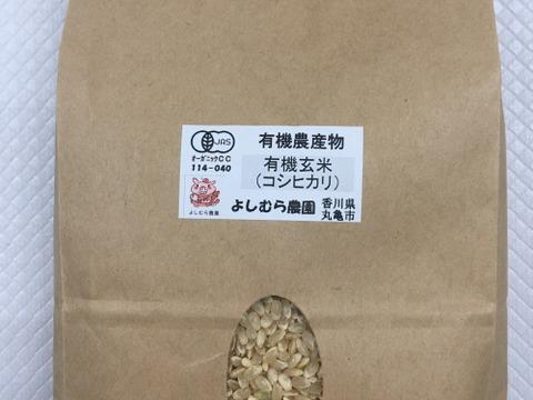 有機玄米(コシヒカリ)1kg香川産/2020年産