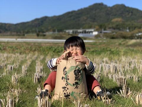 熊本県産ヒノヒカリ20kg(玄米)