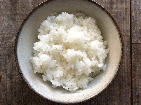 【リオレのレシピ付き】【新米/5kg】ふっくら、もっちり、甘い! 令和3年産 那須の麓のコシヒカリ 白米