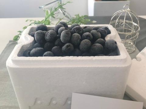 ✿冷凍ブルーベリー✿  中粒450g ❃2021年度収穫❃ 農薬不使用