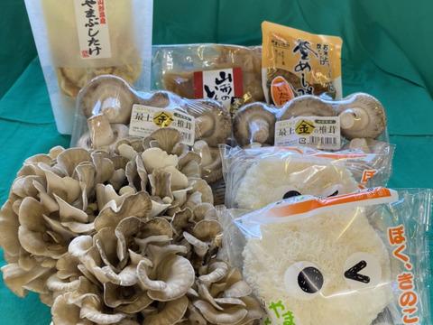 9/19満天☆青空レストラン放映!ゲスト絶賛!最上まいたけのきのこと米沢牛芋煮セット