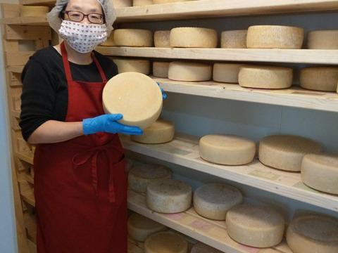 流通量0% 笑) 国産羊乳チーズ!(ペコリーノ、羊ブルー)と羊乳ヨーグルト3点セット(北海道・農家製)
