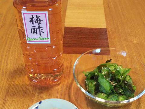 暑さを乗り切る梅の健康効果「梅酢」500ml 2本