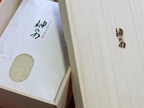 【贈答用】「神の力」桐箱・風呂敷包み玄米5kgコシヒカリ(限定50kg)