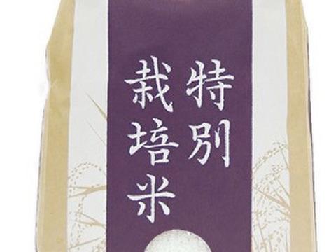 リンゴガイ農法『元気つくし』 玄米10kg