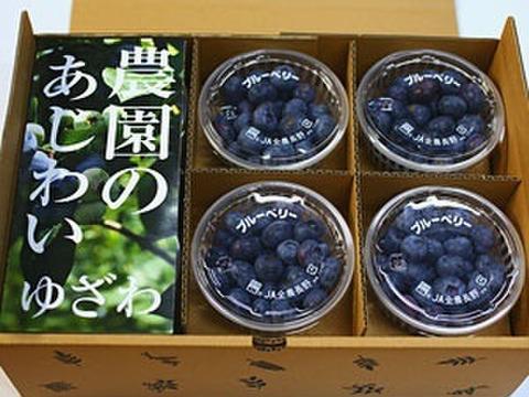 朝摘みフレッシュブルーベリー600g(6カップ)入り箱