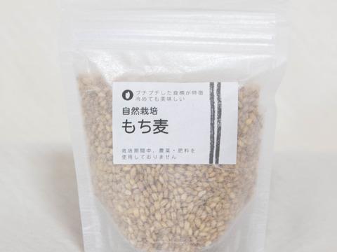 【自然栽培】プチプチ美味しいもち麦(200g)