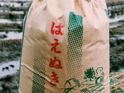 《はえぬき》【白米10kg】【H30収穫】山形県飯豊町産