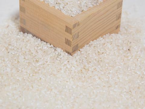 自然栽培 丹波産コシヒカリ 19kg