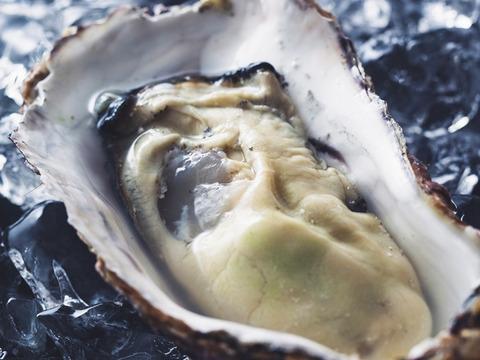 【順次発送】生で食べられる 美浄生牡蠣 むき身 500g