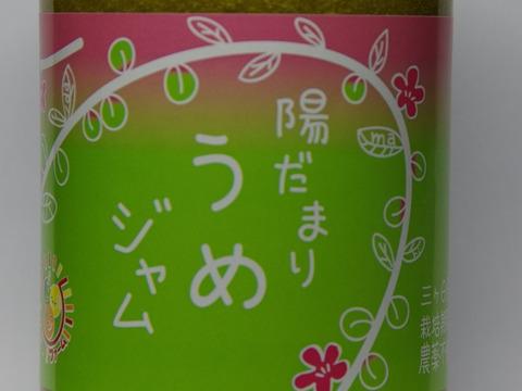 甘酸っぱい 梅ジャム 380g 栽培期間中農薬不使用 南高梅限定使用