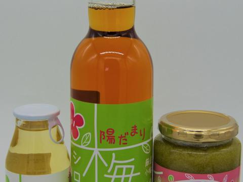 梅加工品セット 梅シロップ 梅ドリンク 梅ジャム セット 自然栽培