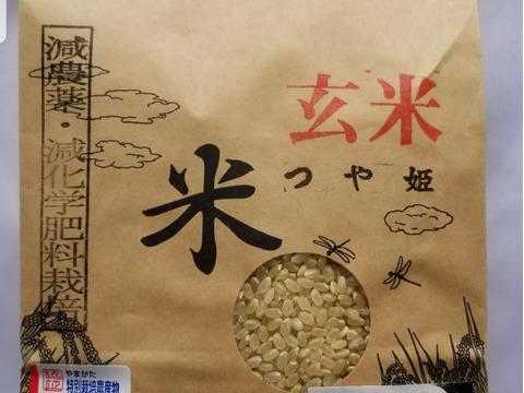 令和3年産 特別栽培米つや姫 玄米2㎏
