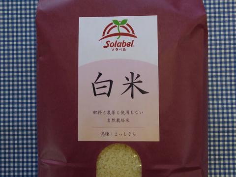 自然栽培♡白米(6分つき):5kg
