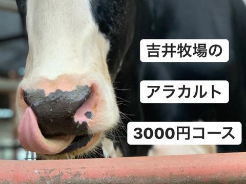 吉井牧場のアラカルトセット3000円コース