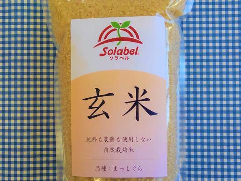 【セット】♥玄米1kg・味噌500g・小豆1kg♥