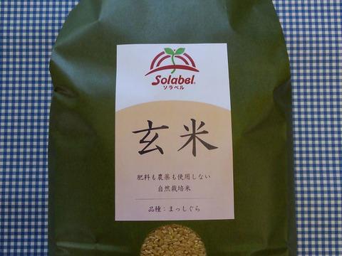 自然栽培♡玄米:5kg